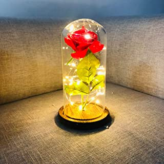 Decdeal Preserved Rose Bedside Lamp Led Rose Flower String Fairy Light Bottle Night Lamp Ro Tic Wedding Decor Glass Cover ...