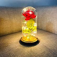 Decdeal Preserved Rose Bedside Lamp Led Rose Flower String Fairy Light Bottle Night Lamp Ro Tic Wedding Decor Glass Cover ...