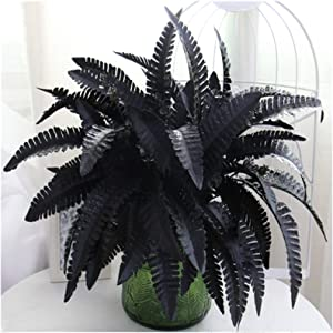 Artificial Black Persian Fern Leaf Plant Fake and Realistic Plastic Wedding Shop Background Decoration 4 Packs