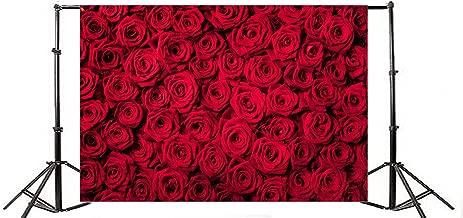 Best flower petal background Reviews