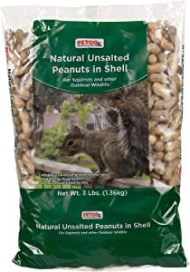 Petco Brand - Petco Natural Unsalted Peanuts in Shell Wildlife Food