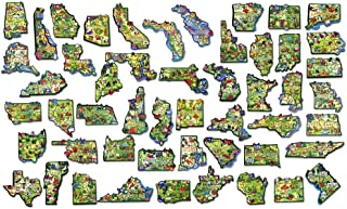 Classic Magnets ARTWOOD Magnet - Complete 50-State Set