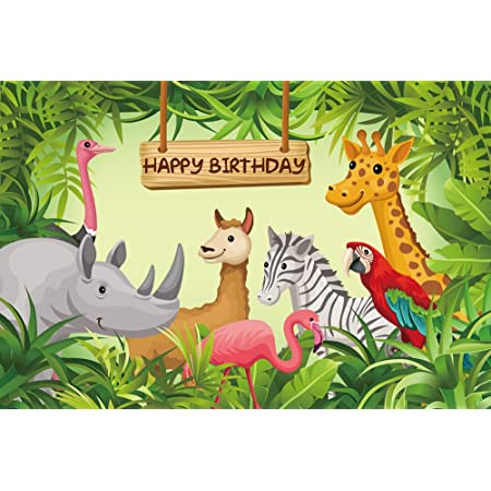 Mehofoto Dinosaurier Junge Geburtstag Fotostudio Kamera