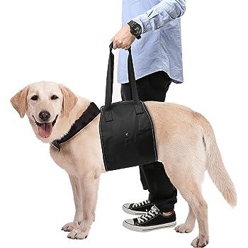 Harnais de soutien pour chien pattes avant et pattes arri/ère par Fdit ; support daide /à la marche pour chiens /âg/és ou bless/és