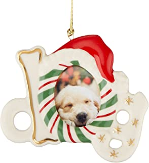 Lenox Dog Frame Ornament/Magnet