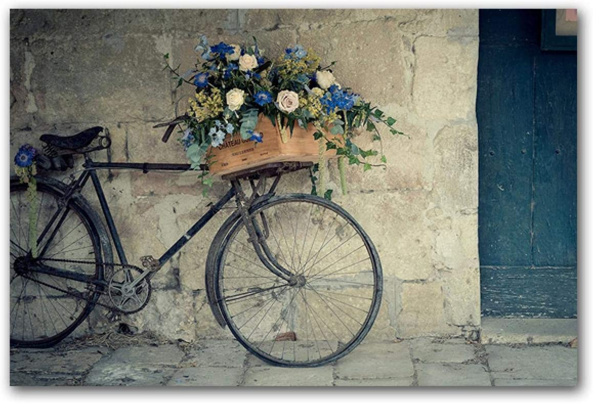 Modern Art Posters and Print Paintin Flower Retro Bicycle Cheap sale Animer price revision Canvas
