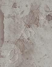 椎名林檎と彼奴等の居る真空地帯(通常盤)[Blu-ray]