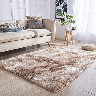 Zone De Style Moderne Rugs Tapis à Poils Longs épais Tapis De Salon Surface  Au Sol