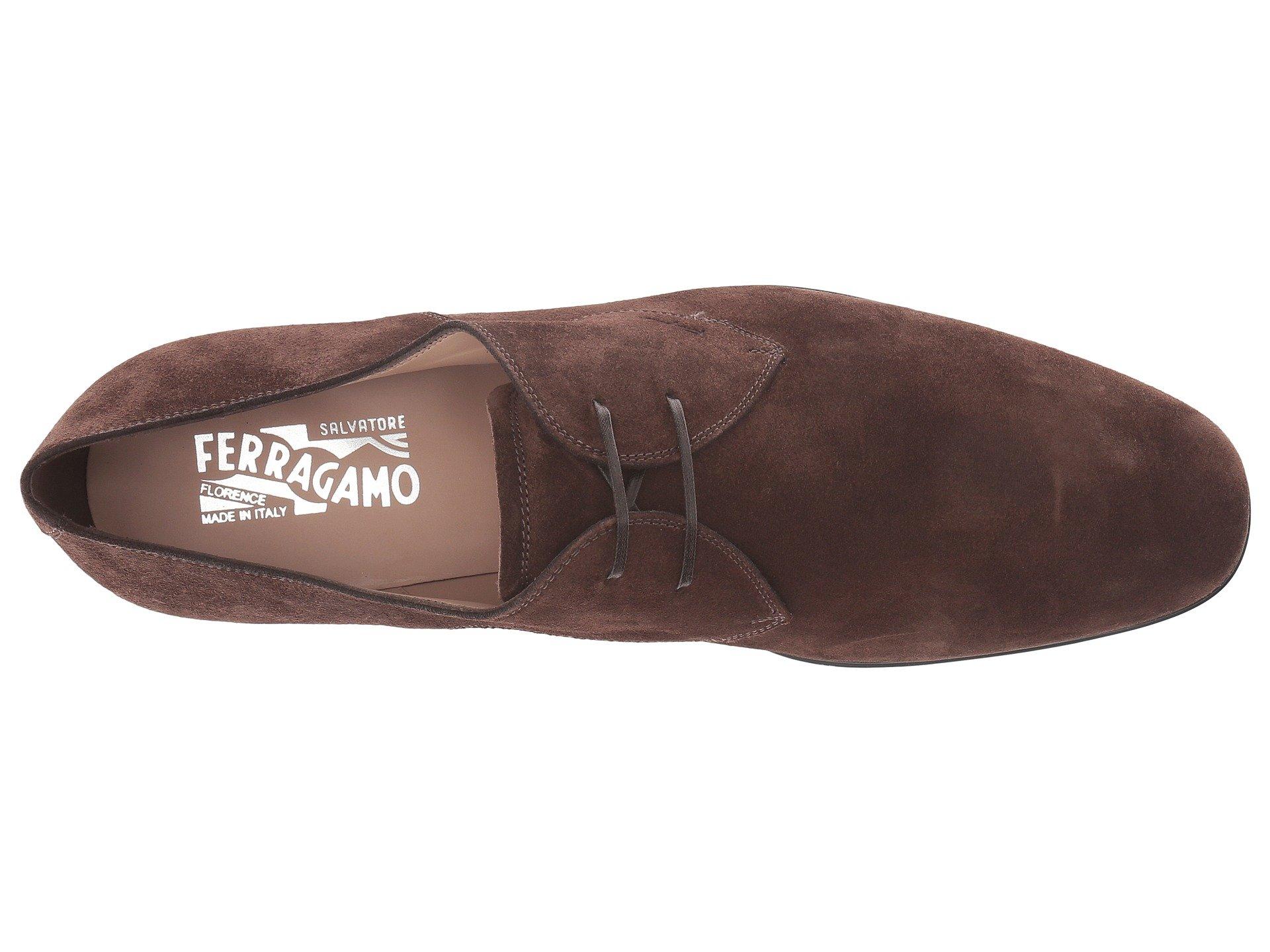 Brown Fortunato Ferragamo 2 Oxford Salvatore xIzqT4wx