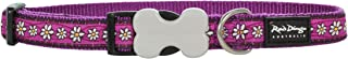 Red Dingo Daisy Chain Patterned Dog Collar, L, 25 mm, 40-60 cm Neck Size, Purple