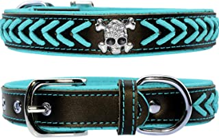 blue leather spiked dog collar