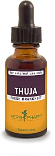 Herb Pharm Thuja Branchlet Liquid Extract for External Use Only- 1 Ounce