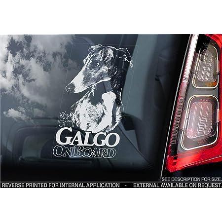 Auto Aufkleber In Deiner Wunschfarbe Windhund Hund Dog Animal Tier 12x7 5cm Autoaufkleber Sticker Folie Auto