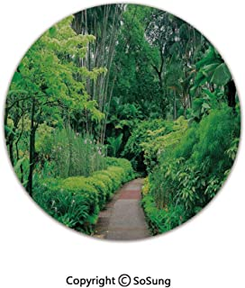 Forest Round Area Rug,Green Plants Trees in Singapore Asia Botanic Gardens Walkway Travel Destination Arboretum,for Living Room Bedroom Dining Room,Round 6'x 6',Green