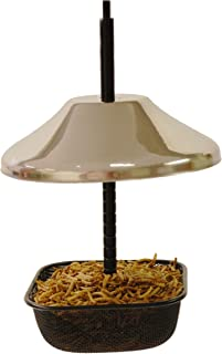 Mealworms Bird Feeder   5 x 5 inch Powder Coated Mesh Bowl with Adjustable Stainless Steel Roof
