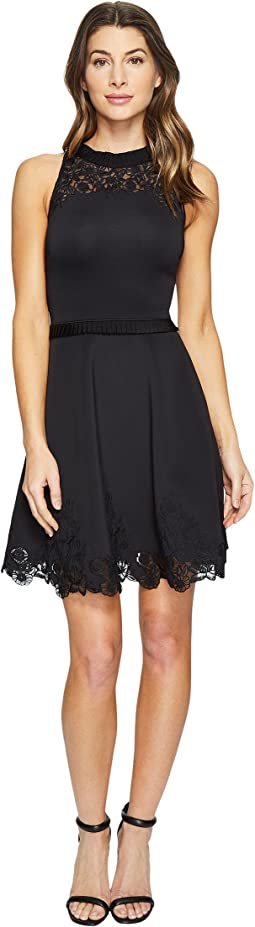 Ted Baker - Zaffron Embroidered Skater Dress