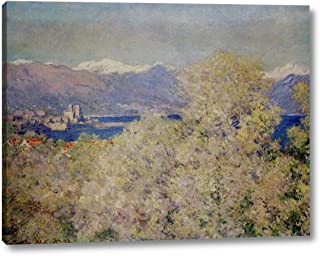 Antibes - View of The Salis Gardens by Claude Monet - 8