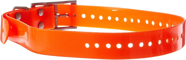 Garmin 1Inch Dog Collar, orange