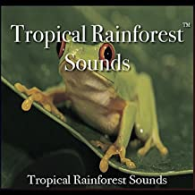 Tropical Rainforest Sounds - 60 Minutes of Tropical rainforest Bliss