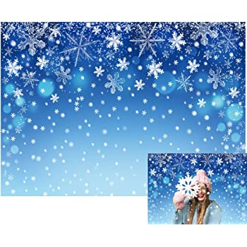 Winter 8x10 FT Photo Backdrops,Seasonal Ash Berry and Blue Toned Foliage Leaves Snowflake Background Background for Kid Baby Boy Girl Artistic Portrait Photo Shoot Studio Props Video Drape Vinyl