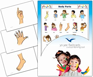 Yo-Yee Flashcards - Body Parts Flash Cards - English Vocabulary Picture Cards for Toddlers, Kids, Children and Adults