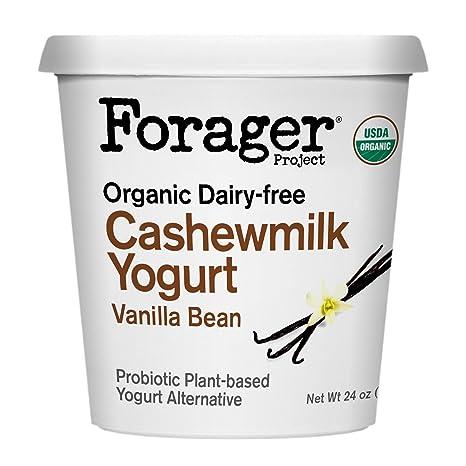 Forager Project, Organic Dairy-Free Vanilla Bean Cashewmilk Yogurt Alternative, 24 Ounce