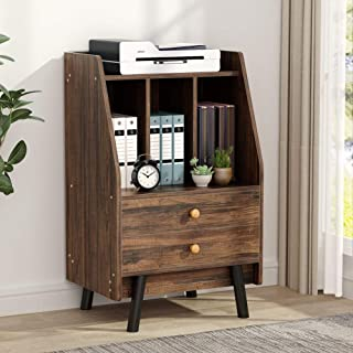 Tribesigns File Cabinet with 2 Drawers, Rustic High Lateral Filing Cabinets Printer Stand with Split Storage Space for Study, Home Office