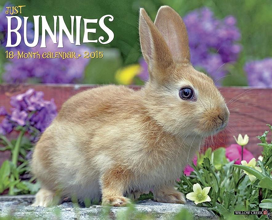 酸比喩振り子Just Bunnies 18-Month 2015 Calendar