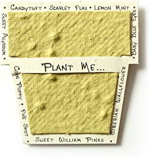 Bloomin Mini Chartreuse Pot-Shaped Seed Paper Enclosure Cards 9 Card Set - Perfect for Valentine's Day, Mother's Day and Wedding Anniversaries! Size: 2.25 x 2.25