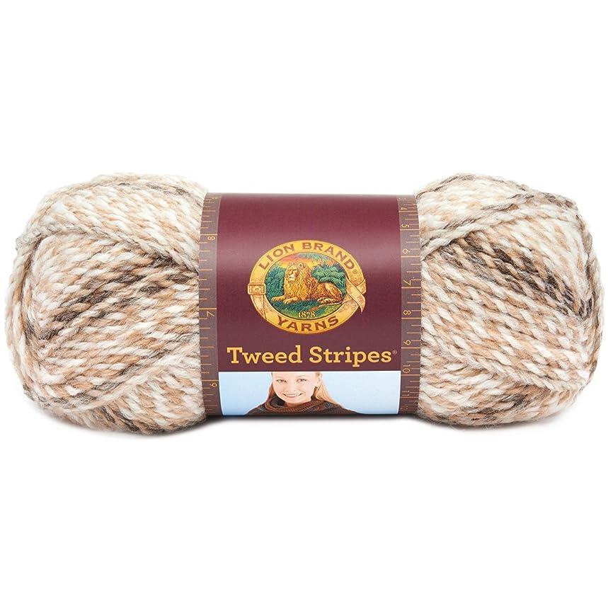 Lion Brand Yarn Lion Brand Tweed Stripes Yarn (204) Caramel,