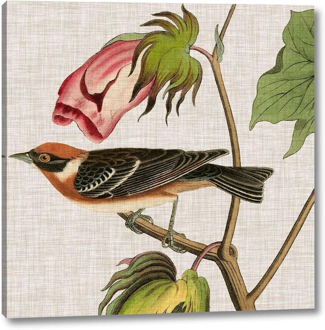 Avian Crop VI by John James Audubon Art Print 16