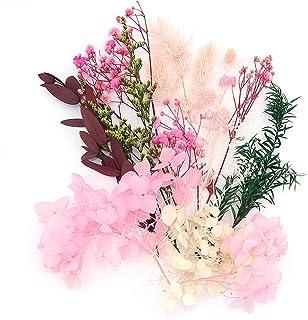 صندوق زهور لمحاكاة الزهور الصناعية من شيواكي محفوظة مصنع زهور مجفف، شمعة من الراتنج صناعة المجوهرات الحرفية ديكور دش ديكور...
