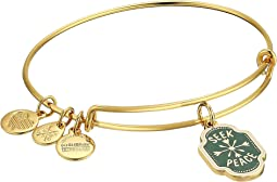 Words are Powerful Seek Peace Bangle