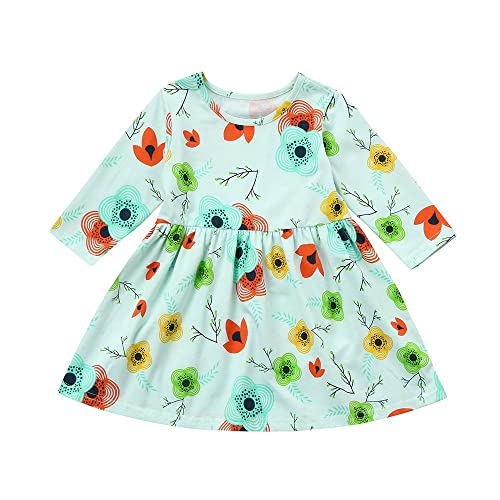 373223dce962 Birdfly Baby Girl Floral Printed T-Shirt Dress Toddler Fun Dresses for Fall  Holiday Party