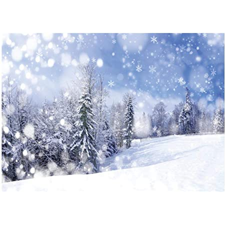 CSFOTO 8x6ft Winter Landscape Backdrop Winter Forest Ice and Snow World Theme Baby Shower Banner Christmas New Year Party Background for Photography Kids Adults Photo Wallpaper