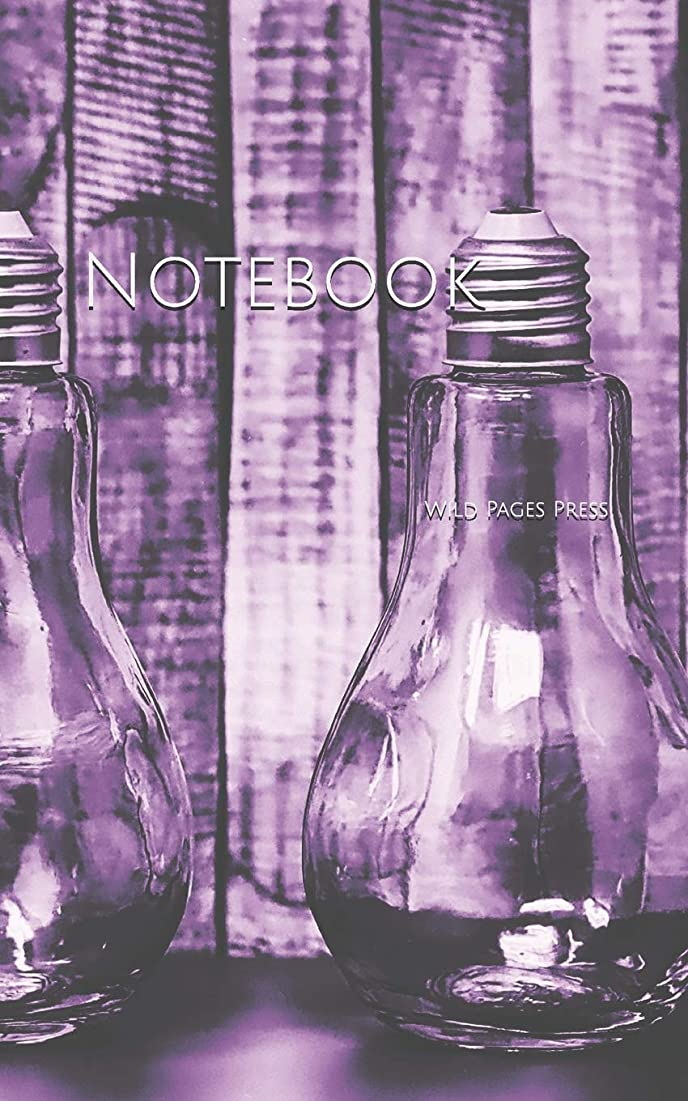 抽象化トークンピンチNotebook: Glasses light bulb storage decoration idea home house bulbs globe interior design designs