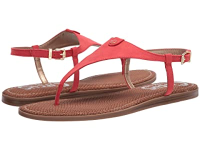 Circus by Sam Edelman Carolina (Coral Punch Microsuede) Women