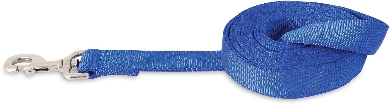 ASPEN PET PRODUCTS 21088 Double Nylon Pet Leash, 1Inch 6Feet, bluee