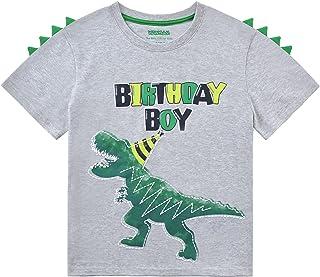 WAWSAM Dinosaurio Camiseta de Cumpleaños Niño Pequeño Camisas Dino T Shirt Regalos