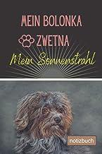 Mein Bolonka Zwetna Mein Sonnenstrahl Notizbuch: Liniertes Notizbuch | Hundebild auf dem Umschlag | Bolonka Zwetna |100 De...