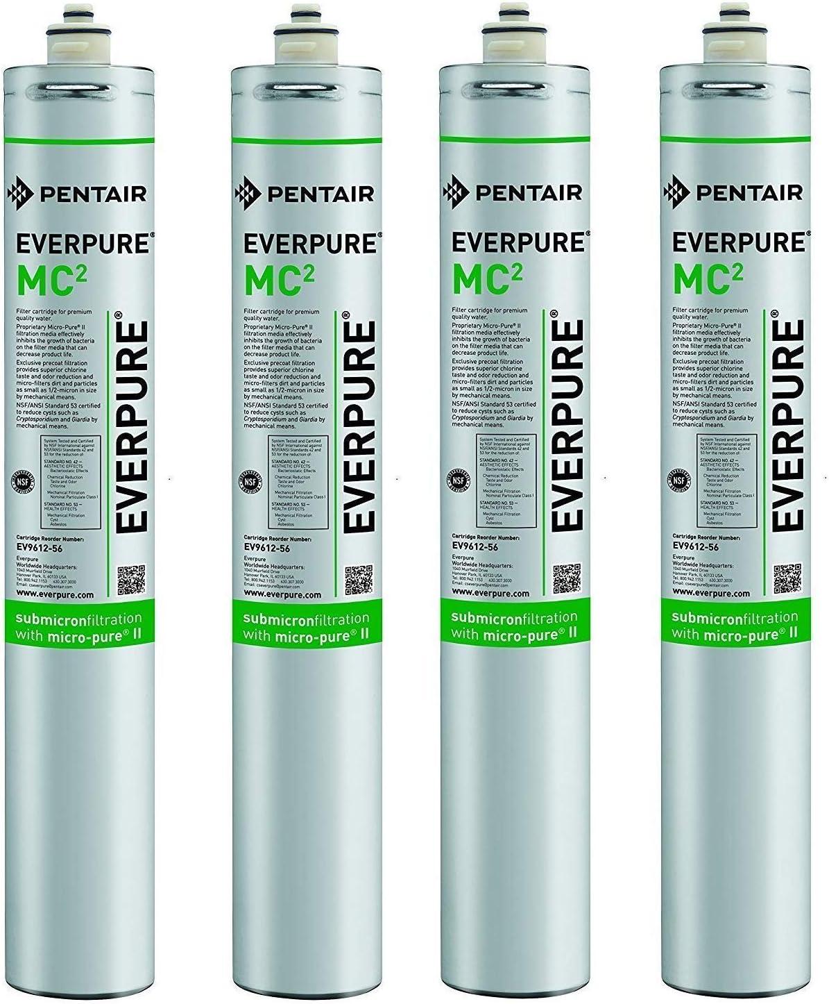 Everpure Spasm price EV961256 Daily bargain sale MC 2 Pack Cart 4 of