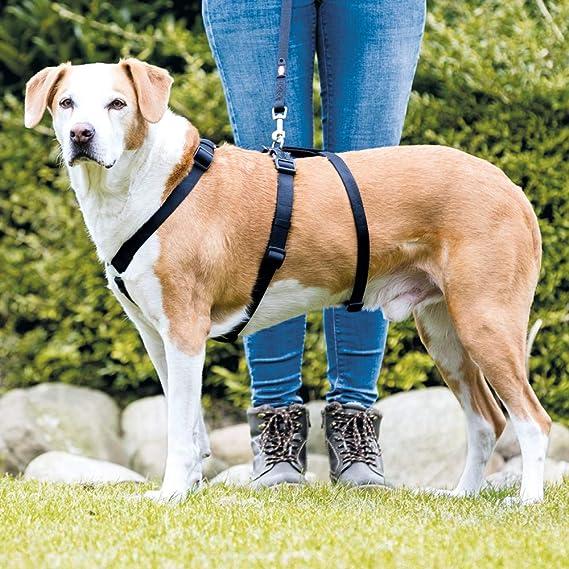 Trixie Stay Geschirr Größe M L 50 75cm 20mm Schwarz Haustier