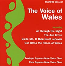 Voice of Wales