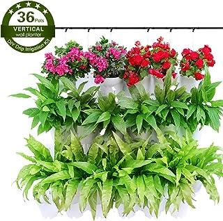 Worth Garden 12 Piezas Conjunto 36 Bolsillos Colgantes