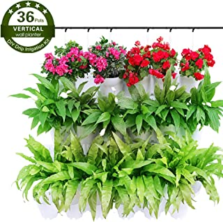 Cuadrado Floralo 21309 Maceta