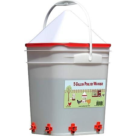 RentACoop 5 Gallon Chicken Waterer - 4 Horizontal Side Mount Poultry Nipples (Corner)