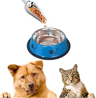 Sage Square Heavy Quality, Round Shape, Anti Skid, Stainless Steel Food/Drink Bowl for Dog/Cat/Other Pets (Medium, Blue)