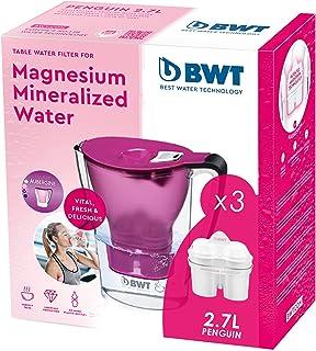 BWT 8801516 filtrante magnésium + Lot de 3 filtres Carafe à Eau, Plastique, Violet, Pack 3
