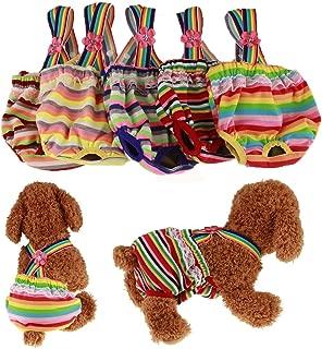 Best dog in underwear Reviews