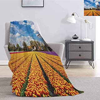Windmill Luxury Special Grade Blanket Tulips of Holland Countryside Landscape in Springtime with Rustic Houses Print Multi-Purpose use for Sofas etc. W70 x L90 Inch Multicolor